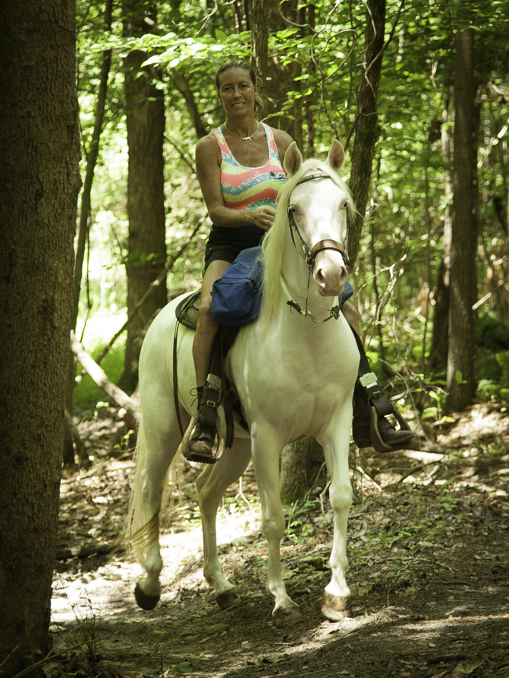 Cremello Horse Ridden on Trails